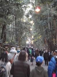 2017miwa14.JPG