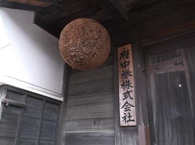 daigoishi27.JPG