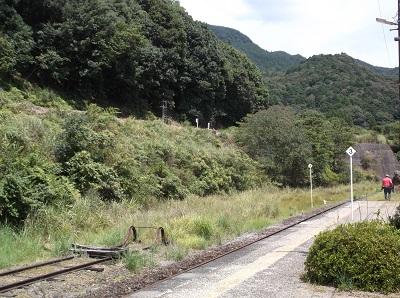 kumakuma031.JPG