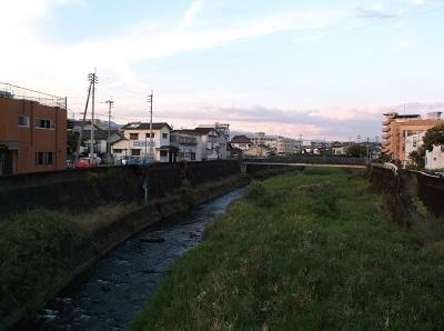 kumakuma077.JPG