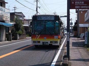 saga32.JPG