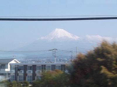 shizusuru05.JPG