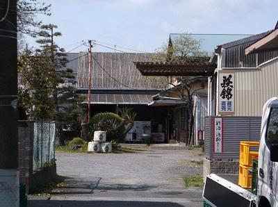 shizusuru13.JPG