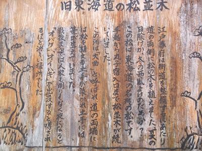 shizusuru37.JPG