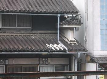 tokushima50.JPG