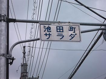 tokushima64.JPG