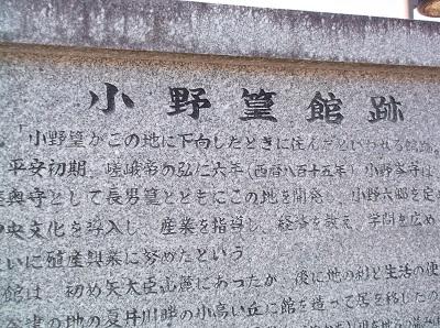 iwashira031.JPG