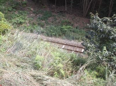 kumakuma032.JPG