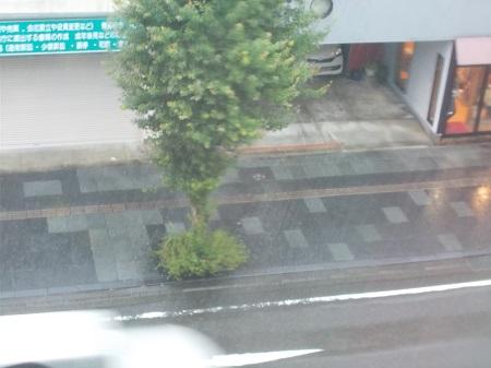 kumakuru038.JPG