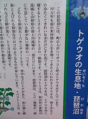 sansai129.JPG