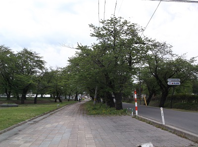 sansai136.JPG