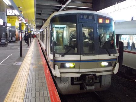umenomiya03.JPG