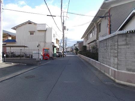 umenomiya08.JPG
