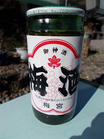 umenomiya23.JPG