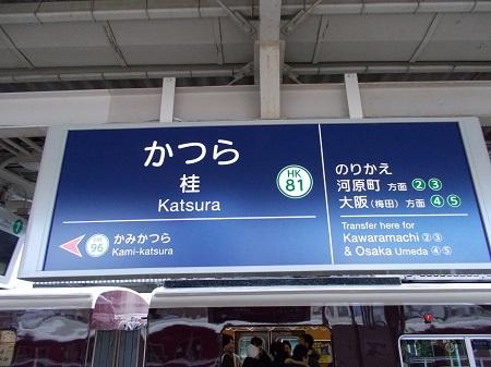 umenomiya29.JPG